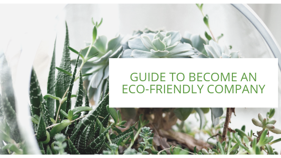 Eco-friendly-1